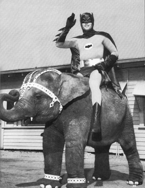 Before the Batmobile....