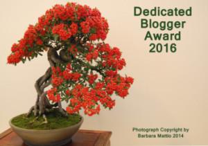 Dedicated Blogger Award